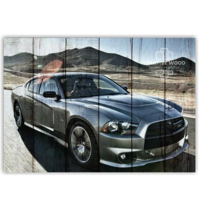 Painting on boards Pictures on the boards AUTO - Dodge Charger