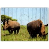 Африка - Носороги