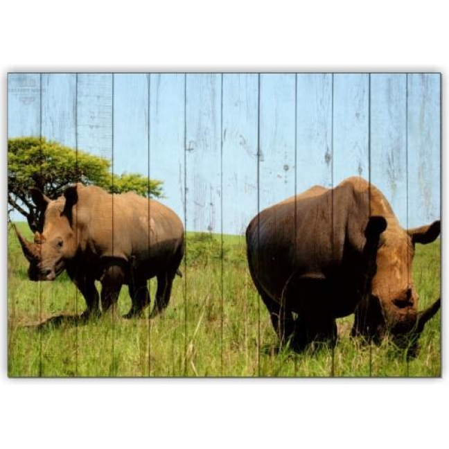 Painting on boards Africa - Rhinos