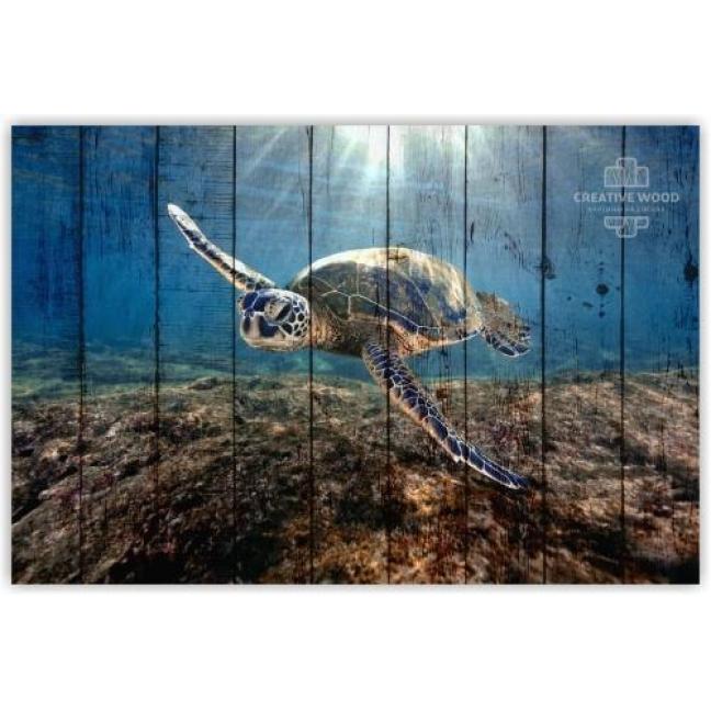 Painting on boards Sea - Turtle