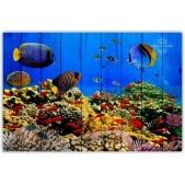 Sea - Fish