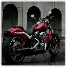 Коллекция: Мотоциклы