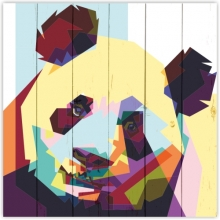 Collection: Vector graphics