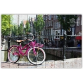 Bicycles - Pink Bike