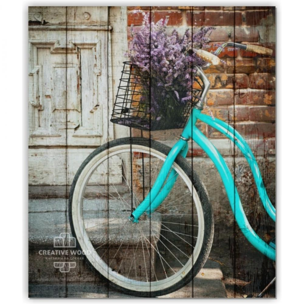Bicycles - Bike and lilac