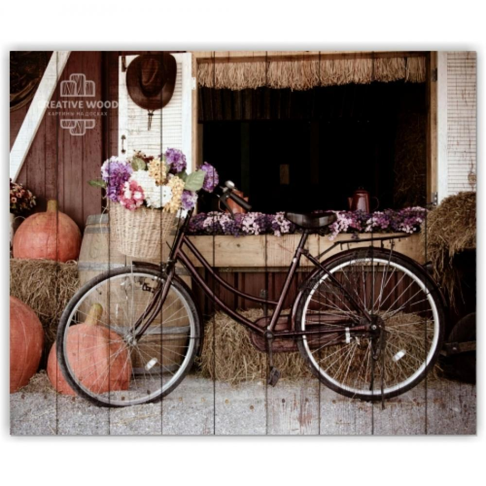 Bicycles - Bike with pumpkin