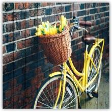 Коллекция: Велосипеды
