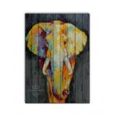 ZOO  — Слон