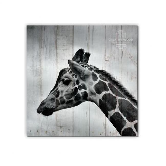 Painting on boards ZOO  — Giraffe