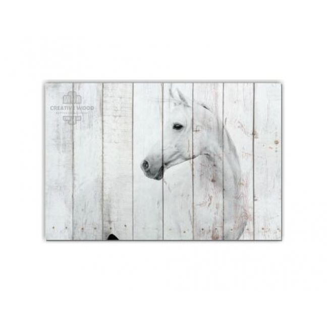 Painting on boards ZOO - White Horse