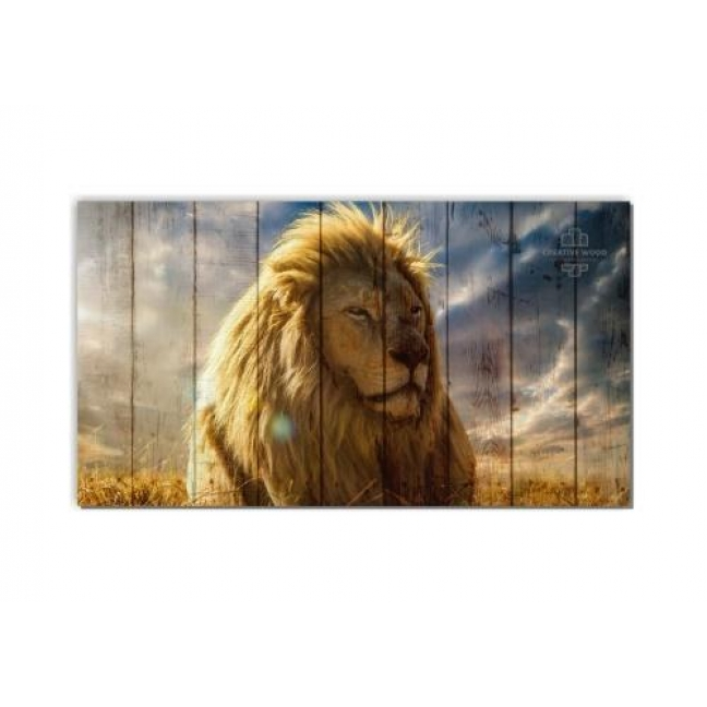 Painting on boards ZOO - The King of beasts