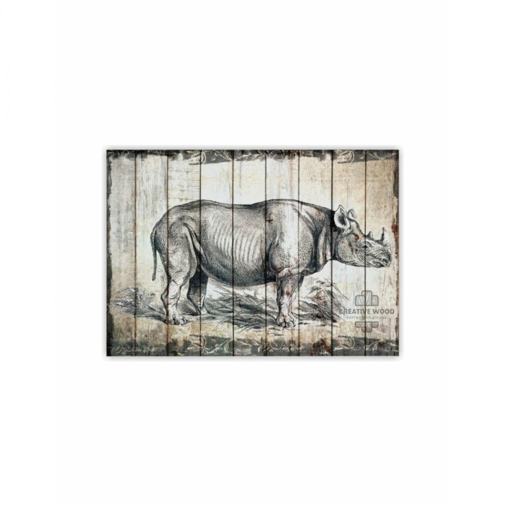 ZOO  — Носорог