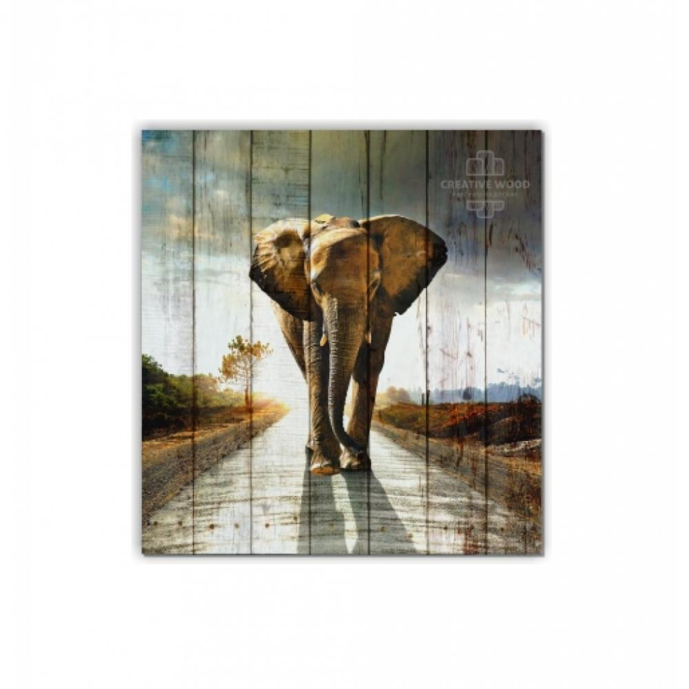 Pictures on the boards - The Walking Elephant