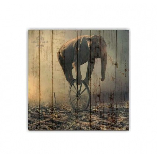 Painting on boards ZOO - Elephant on a wheel