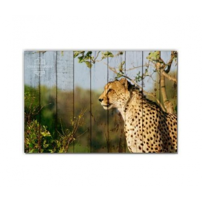 Painting on boards ZOO  — Leopard