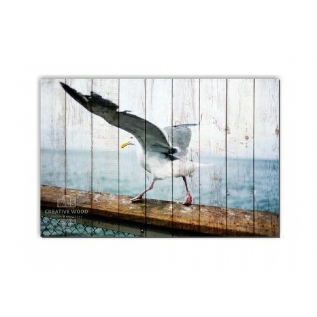 Painting on boards ZOO - Gull