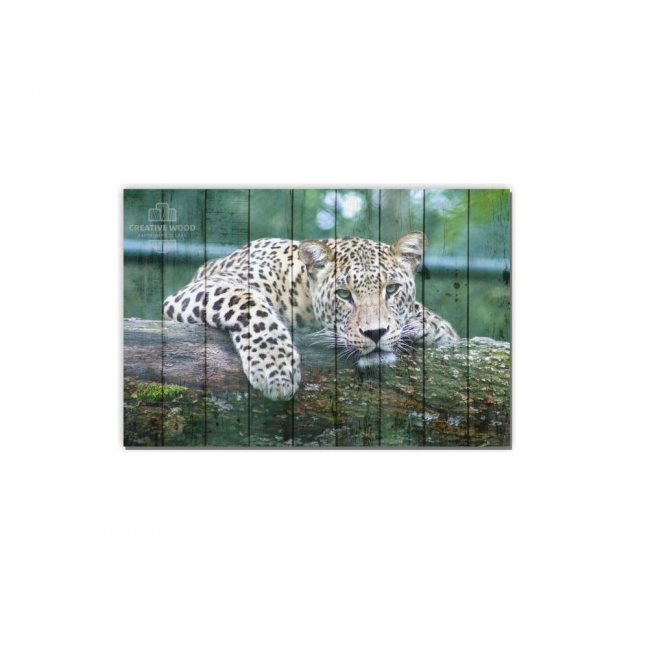 Painting on boards Pictures on the boards  ZOO - Jaguar