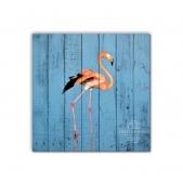 ZOO  — Фламинго