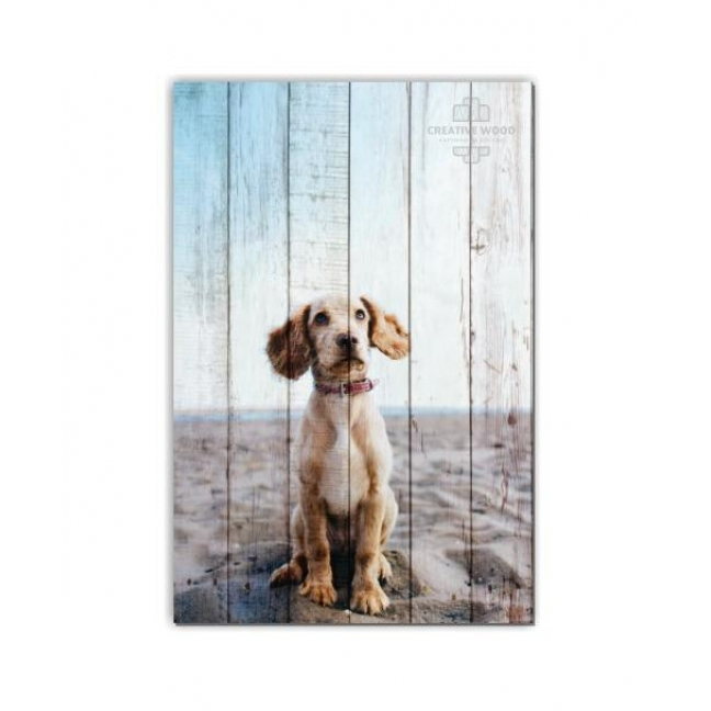 Painting on boards ZOO  — A puppy on the beach