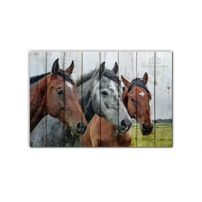 Painting on boards ZOO  — Horses