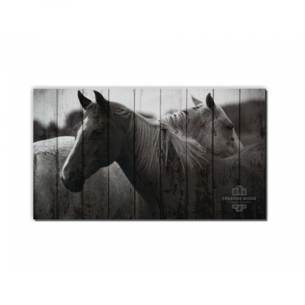 ZOO  — Две лошади