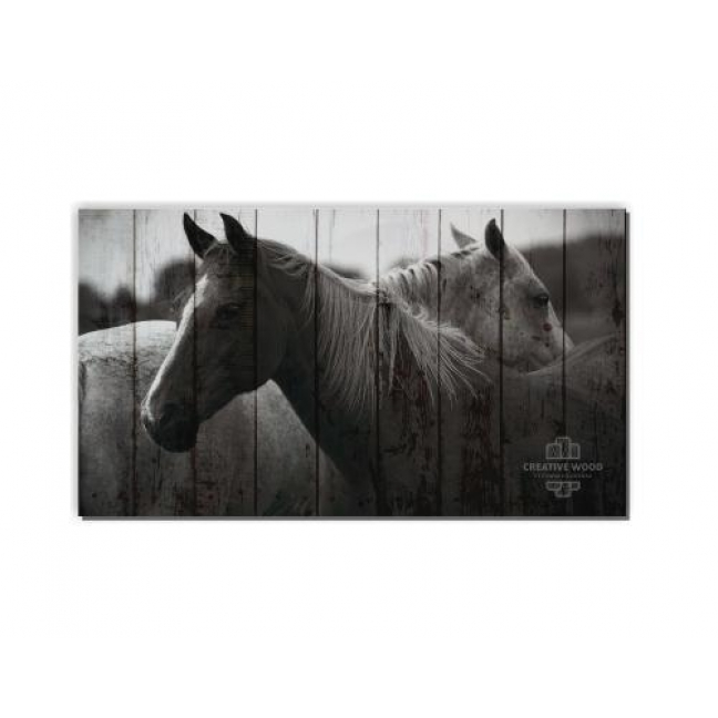Painting on boards ZOO  — Two Horses
