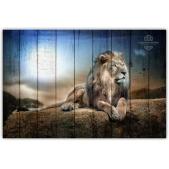 ZOO  — Король лев