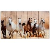 ZOO  — Скачущие лошади