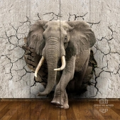 Picture on the boards - Elephant