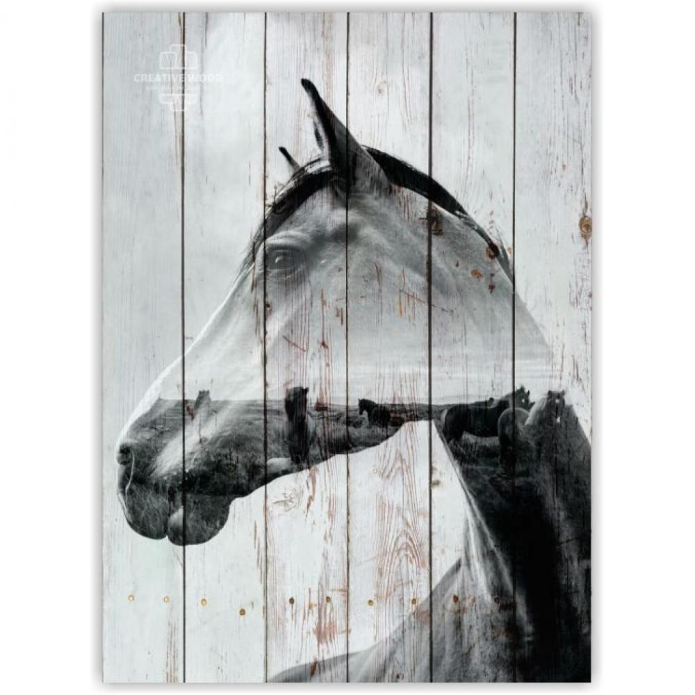 Picture on the boards LOFT - Horse double exposure