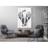 Loft -  Слон
